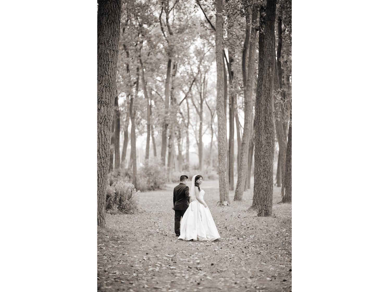 stephen sager photography 2186 toronto wedding photography