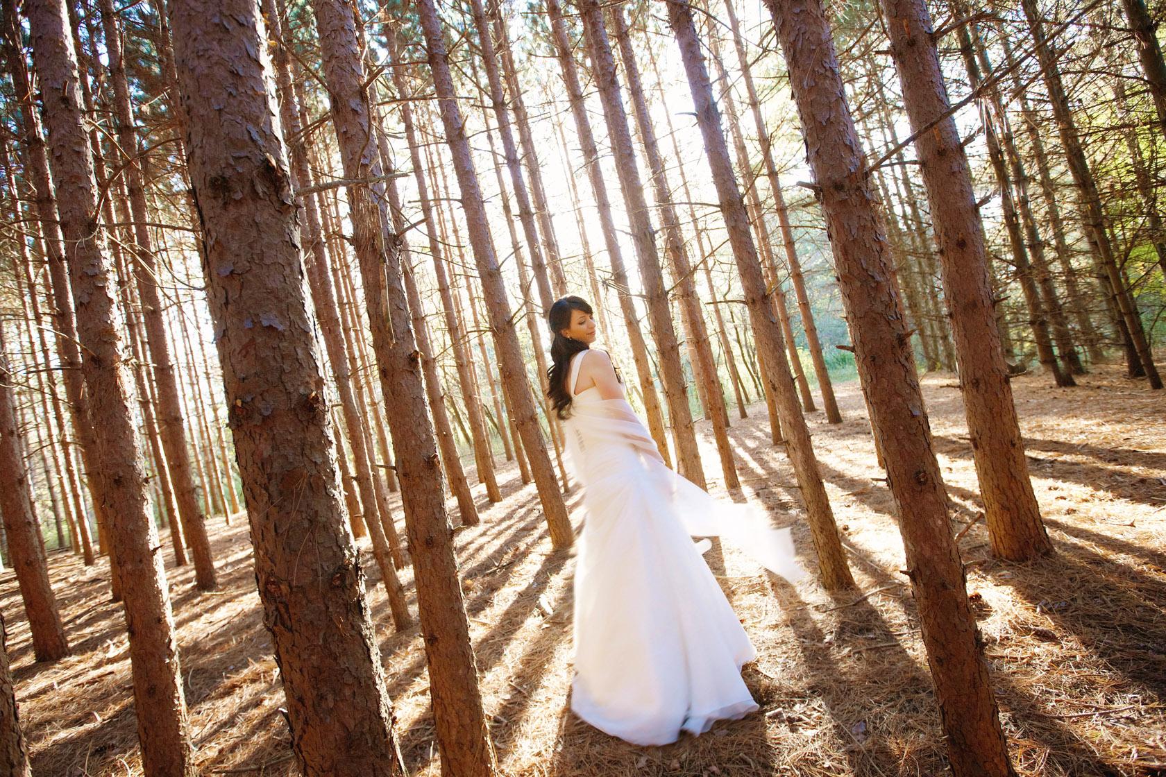 stephen sager photography 2202 toronto wedding photography