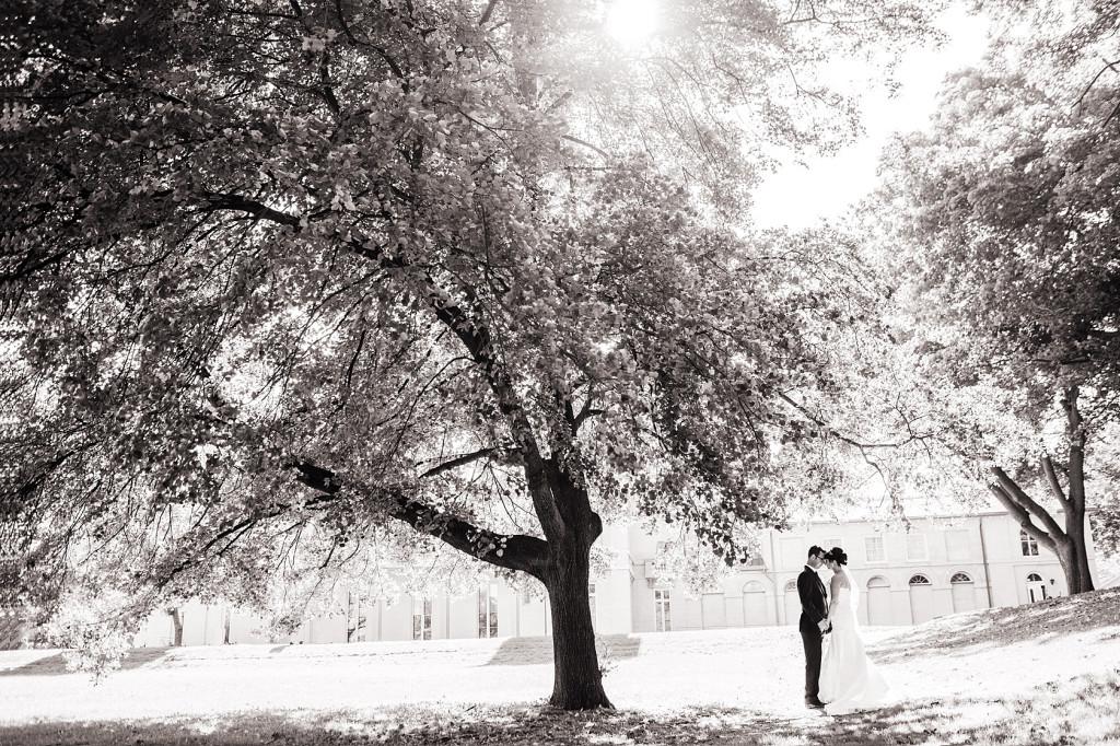 toronto_wedding_photography_0035_stephen_sager